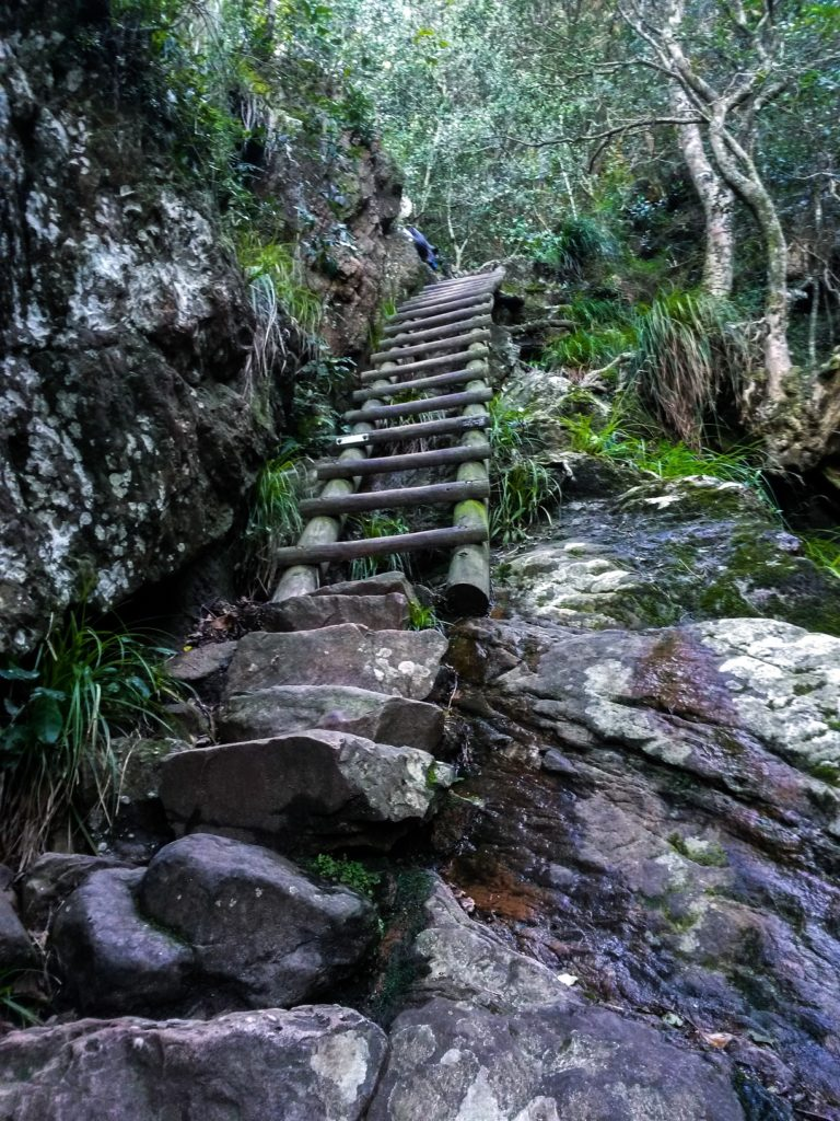 Treppe auf dem Skeleton Gorge