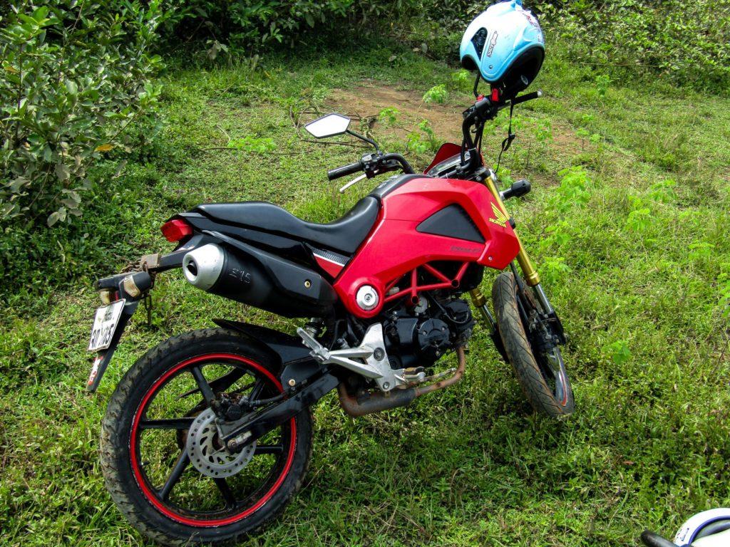 Honda MSX 125ccm rot