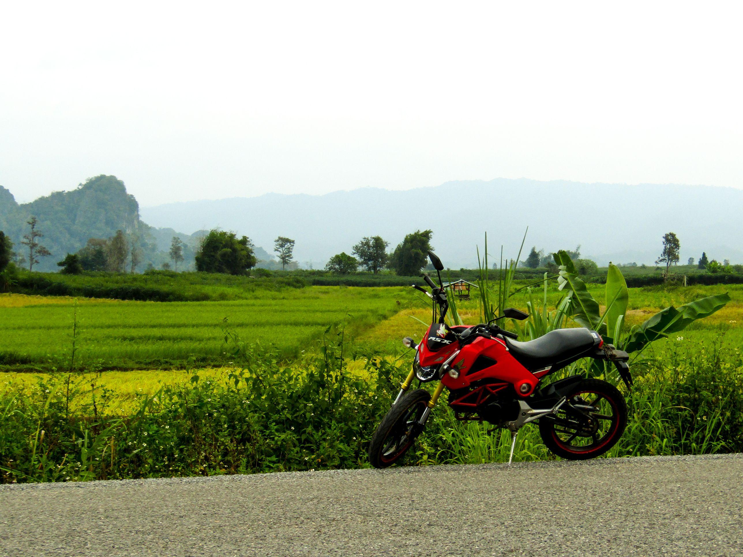 Thakhek Loop - Honda MSX 125ccm
